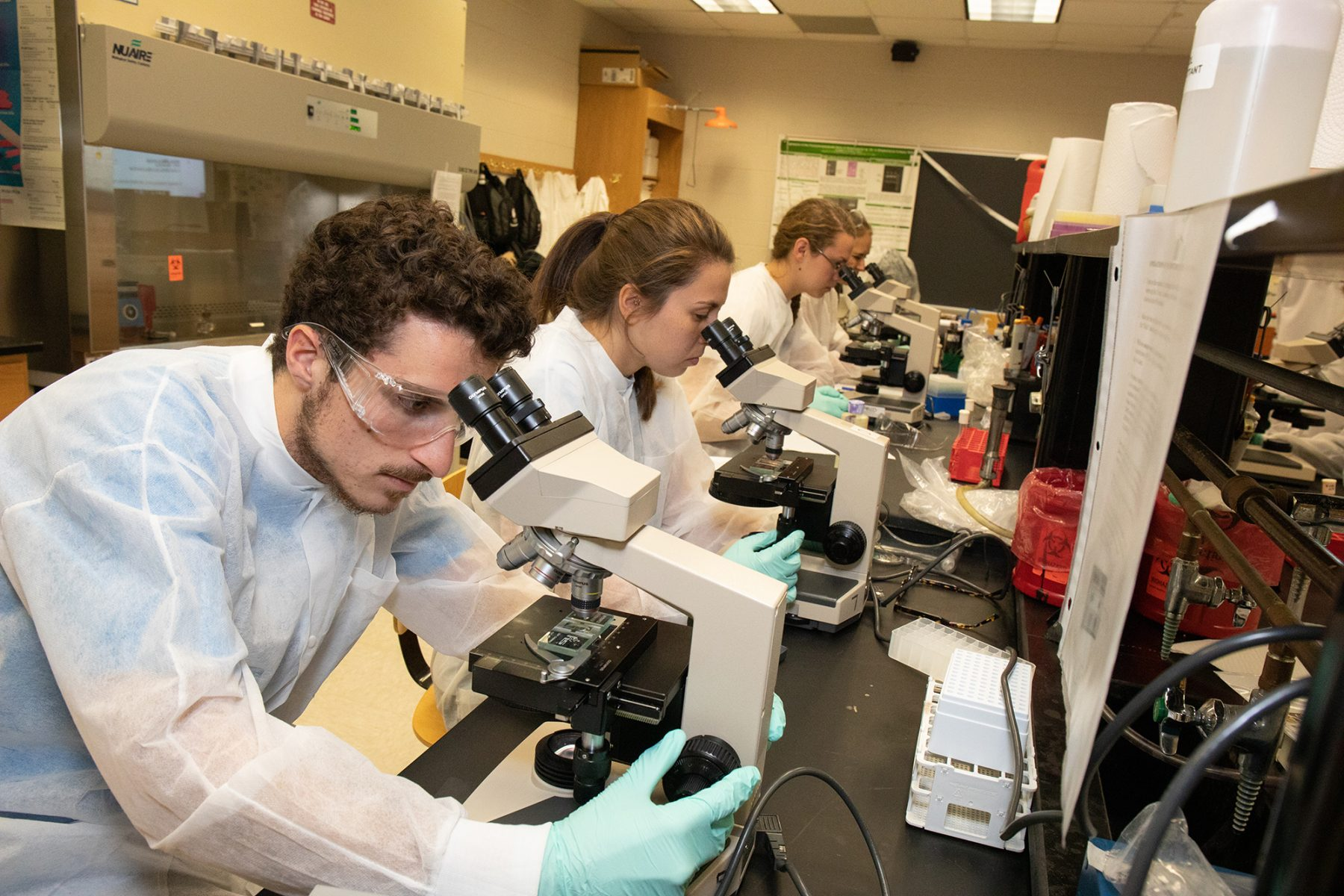 Students using microscopes in Professor Baron's Biology class
