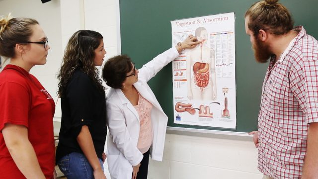 Professor reviewing Digestion & Absorption chart with students