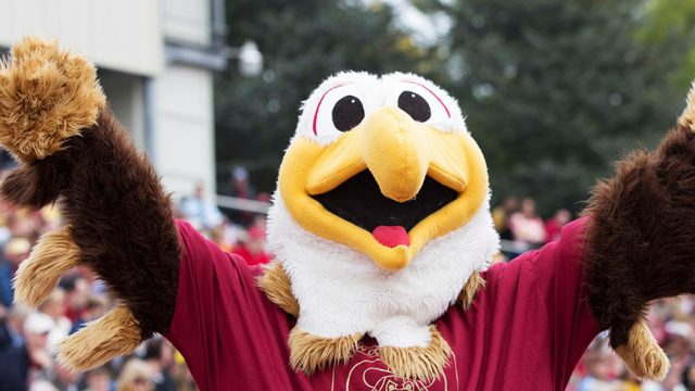 Ernie the Eagle cheering at a BC football game