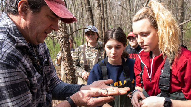 Students examining lizard in forest
