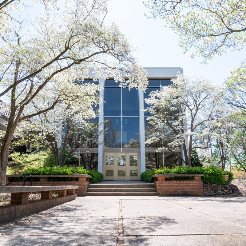 Cole Hall during spring time
