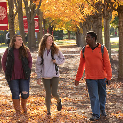 Three people walk together surrounded by trees in the fall|Three people walk together surrounded by trees in the fall