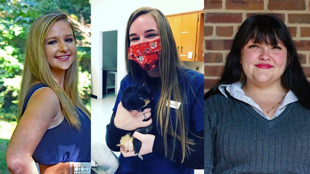 Headshots of three female students